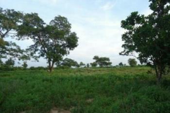 Fcda 55hectares of C of O Kyamis Land, Kyami Airport Road, Kyami, Abuja, Mixed-use Land for Sale