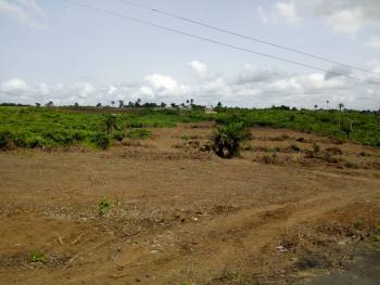 Land Measuring 670sqm, Ikota Villa Estate, Lekki, Lagos, Residential Land Joint Venture