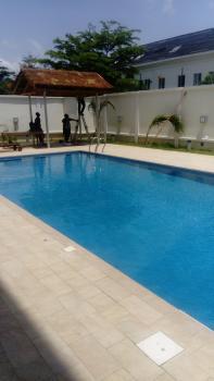 Cute 1 Bedroom Flat, Banana Island, Ikoyi, Lagos, Mini Flat for Rent