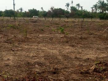 Plots of Land for Sale at Iyana Ilogbo with Cofo, Iyana Ilogbo, Mosa Dangote, Ogun State., Sango Ota, Ogun, Mixed-use Land for Sale
