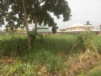 One and Half Plot of Land Measuring 1163sqm, Ori-oke, Ogudu, Lagos, Land for Sale