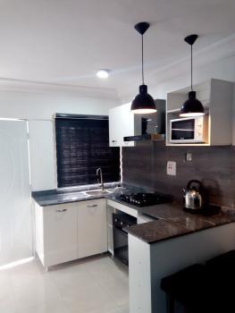 Luxury One Bedroom Apartment, Lafiaji Way, Dolphin Estate, Ikoyi, Lagos, Mini Flat Short Let