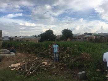 (for Sale) 30 By 100 Plot of Land in Dakwa Behind Friut Market, Abuja, Dakwa, Dei-dei, Abuja, Residential Land for Sale