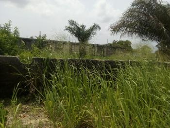 Fenced 3 Plots Together, Royal Palm Estate, Badore, Ajah, Lagos, Mixed-use Land for Sale