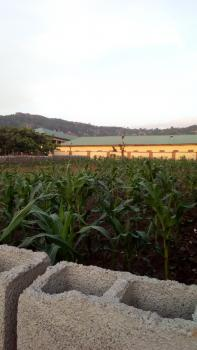 Buildable Livable Land of 450sqm, Close to The Road, Fo1, Kubwa, Abuja, Land for Sale
