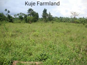 Fenced Farmland, Kuje, Abuja, Land for Sale