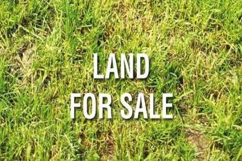 2, 500 Sqm, on Emmanuel Mbaka Drive, Asokoro District, Abuja, Residential Land for Sale
