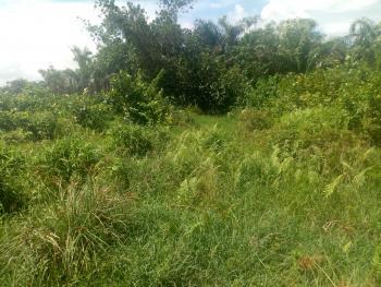 Land, Sponsors Needed, Eluju, Ibeju Lekki, Lagos, Mixed-use Land Joint Venture