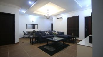 Well Furnished Luxury 3 Bedroom Apartment, Mabuchi, Abuja, Mini Flat for Rent