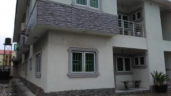 Massive Miniflat, Off Mike Adegbite Street, Lekki Phase 1, Lekki, Lagos, Mini Flat for Rent