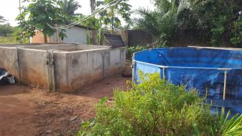 1 Acre of Land with a Fish Pond & Farm Land, Obafemi Owode, Ogun, Commercial Land for Rent