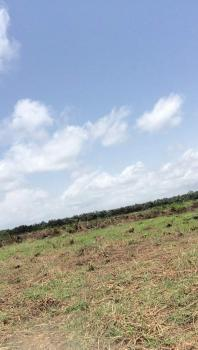 40 Acres of Dry Land, Osoroko Community, Along The Lekki Free Trade Zone Road, Ibeju Lekki, Lagos, Mixed-use Land for Sale
