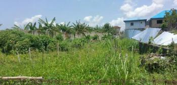 Fenced and Gated Half Plot of Land Measuring 350sqm, Millenium Estate, Oke Alo, Gbagada, Lagos, Residential Land for Sale