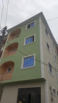Executive Newly Built Mini Flat with 2 Toilets and 2 Bathrooms, Oke-olu Street, Lawanson, Surulere, Lagos, Mini Flat for Rent