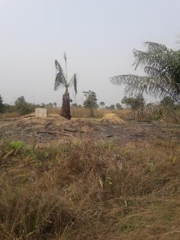 Buy Fast Appreciating Plots of Land in Arapagi Ibeju Lekki (excision Title), Off Elerangbe Road, Arapagi Oloko, Ibeju Lekki, Lagos, Residential Land for Sale