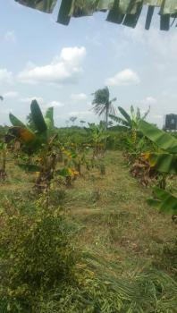 Farmland at Ifo Ogun State, Ifo, Ogun, Mixed-use Land for Sale