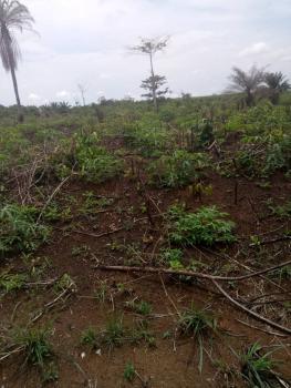 2 Acres of Land, Kudeti Avenue, Acora Estate, Off Abba Johnson, Adeniyi Jones, Ikeja, Lagos, Mixed-use Land for Sale