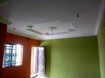 Newly Built Luxury Finished 12 Units of Mini Flats with 2 Toilets, Lawanson, Surulere, Lagos, Mini Flat for Rent