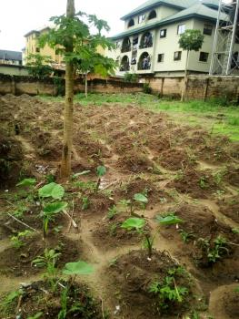 One and Half Plot, Commissioners Quarters, Awka, Anambra, Residential Land for Sale