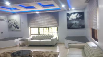 Ambassadorial Serviced and Fully Furnished 5 Bedroom Duplex with Dubai Finishing, 2bedroom Chalet, Office/conference Room, Wuse 2, Abuja, House for Rent