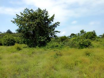 150 Acres of Land, Ibeju Lekki, Lagos, Residential Land Joint Venture