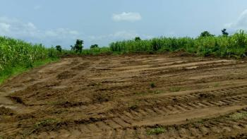 Vip Garden 600sqm (120 Ft × 60 Ft), Boys Town, Ipaja, Lagos, Residential Land for Sale