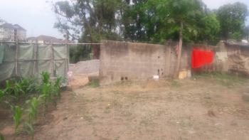 6000sqm Land Along The Major Road, Along Next Cash N Carry Road, Mabuchi, Abuja, Residential Land for Sale