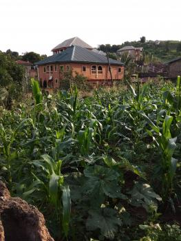a Plot of Land, Phase 6, Trans Ekulu, Enugu, Enugu, Residential Land for Sale