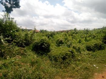 a Plot of Land, Koru Koru, Olorunda Abaa, Akobo, Ibadan, Oyo, Residential Land for Sale