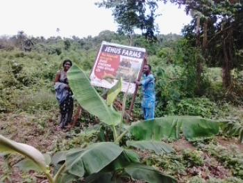 Jehus Farms Ltd, Which Is About 10min Drive From Ogere, Approximately 45min Drive From Ojodu Berger, Obafemi Owode, Ogun, Industrial Land for Sale