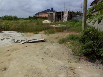 Consent, Eden Garden Estate, Ajah, Lagos, Land for Sale