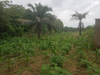 19 Plots of Land, Behind Charis Hotel, Flower Garden Road, Gra, Ilorin East, Kwara, Mixed-use Land for Sale