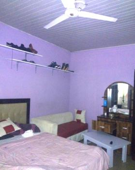 Nice and Standard Self Con Apartment, New Road Area, Opposite Chevy View Estate, Lekki, Lagos, Self Contained (single Room) for Rent