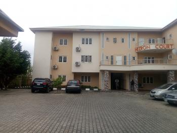 Fully Serviced 2 Bedroom Flat with Bq, Jabi, Abuja, Flat for Rent