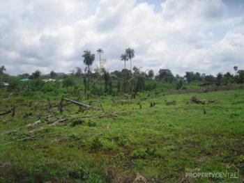 11 Plots of Land, Ajibandele, Behind Deeper Life Camp Ground, Ikere Road, Ado-ekiti, Ekiti, Residential Land for Sale