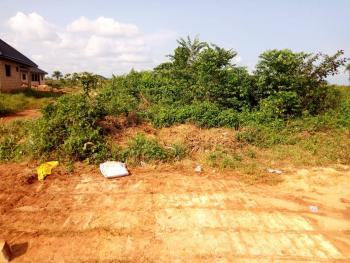 Land  (100 By 100), Igwomu Area, Ikpobahill, Idogbo, Ikpoba Okha, Edo, Residential Land for Sale