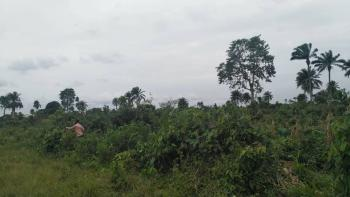 Land, Interlocking Road, Off Portharcourt - Aba Road,  Near Toll Gate, Obio-akpor, Rivers, Residential Land for Sale