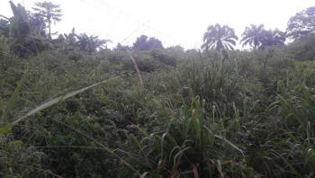 Five & Half Plots of Land, Ohokobe Afara, Besides Saclux Paint, Off Madonna Hospital, Aba Road, Umuahia, Abia, Mixed-use Land for Sale