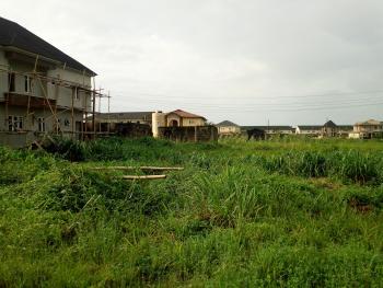 800sqm Land, with Global C of O and Deed Behind Dillion Development Ikate, Lekki Lagos, Behind Madiba Court, Kusenla Road, Ikate Elegushi, Lekki, Lagos, Mixed-use Land for Sale