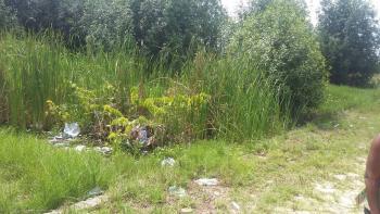 Land Measuring 165 Hectares, Lagos Ibadan Expressway, Km 46, Ogun, Mixed-use Land for Sale