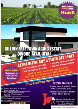 Agric Estate, Owode-adoodo Road, Ado-odo/ota, Ogun, Mixed-use Land for Sale