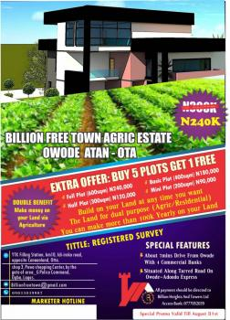 Fertile Agricultural Estate, Owode, Atan Ota, Ado-odo/ota, Ogun, Mixed-use Land for Sale