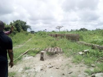 Acre of Lands for Sale at Ofada, Adewolu, Mowe Ofada, Ogun, Land for Sale