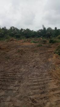 Plots of Land for Sale at Farm Park Epe Lagos, Agricultural Scheme Estate (farm Park), Igbonla Road, Beside Augustine University, Epe, Lagos, Commercial Land for Sale