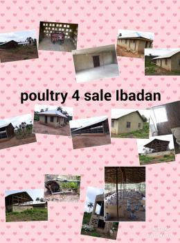 Poultry, Iware Village, Onidundu, Off Akinmonrin Road, Moniya, Ibadan, Oyo, Commercial Land for Sale
