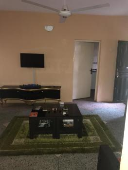 Clean and Spacious Mini Flat, Idita Street, Bode Thomas, Surulere, Lagos, Mini Flat for Rent