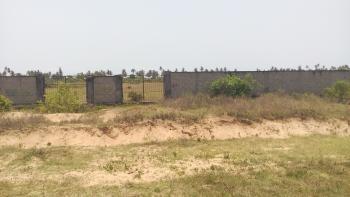 Land (29.19 Acres), Okunfolu Village, Lekki Free Trade Zone, Lekki, Lagos, Mixed-use Land for Sale