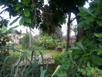 Half a Plot of Land, New Bodija, Ibadan, Oyo, Residential Land for Sale