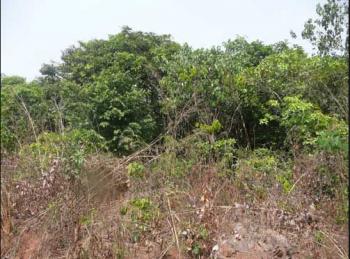 1 Plot of Land (fenced and Gated), Umuocha, Ubomiri, Mbaitoli, Imo, Mixed-use Land for Sale