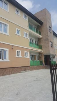 Newly Built Spacious 2 Bedroom Flat All Rooms En Suite with Guest Toilet Pop Ceiling Finishing, Fitted Kitchen Cabinets, Wardrobe, Lsdpc Estate, Iponri, Surulere, Lagos, Flat for Sale
